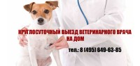Круглосуточная ветеринарная клиника ВетКлиник-Мск