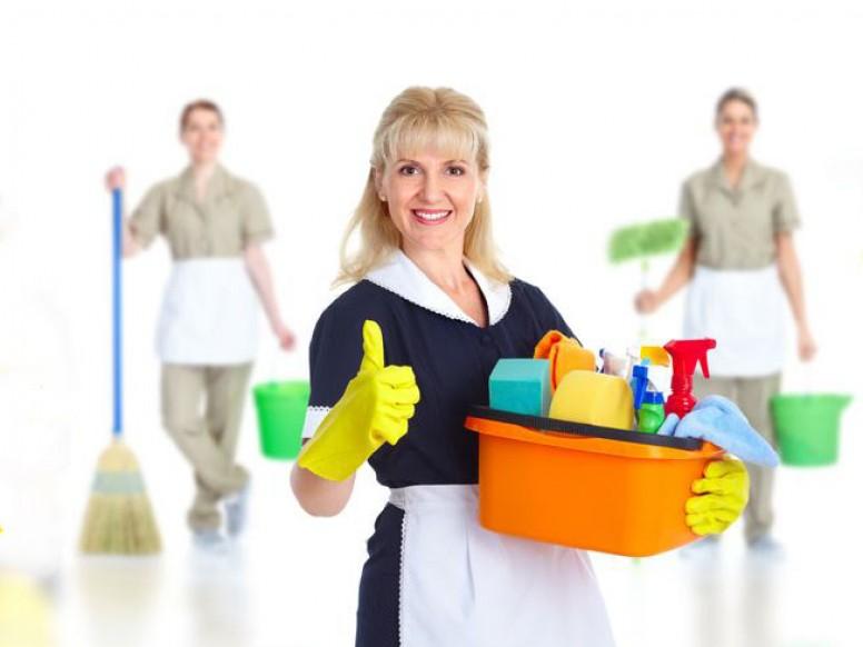 Уборка-химчистка домов и офисов